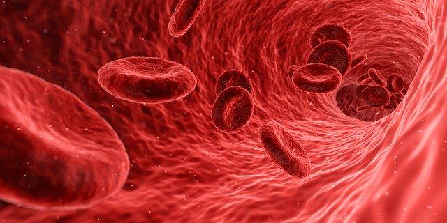 dieta zależna od grupy krwi